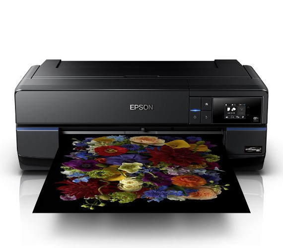 epson sure color p800